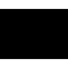 Bupivacaine - 5g